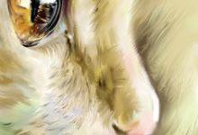 Getigerte Katzen Rassen 220x150 - Getigerte Katzen Rassen