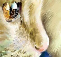 Getigerte Katzen Rassen 236x220 - Getigerte Katzen Rassen