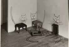 Gute Besserung Katzenbilder 220x150 - Gute Besserung Katzenbilder