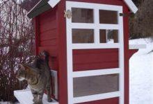 Katze Grundschule Kostenlos 220x150 - Katze Grundschule Kostenlos