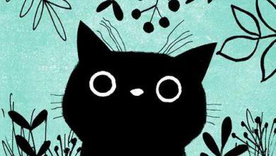 Katze Silhouette Kostenlos 390x220 - Katze Silhouette Kostenlos