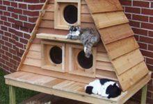 Katzen Ausmalbilder Zum Ausdrucken 220x150 - Katzen Ausmalbilder Zum Ausdrucken