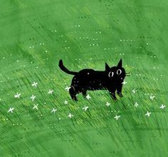 Katzen Gifs Kostenlos 236x220 - Katzen Gifs Kostenlos