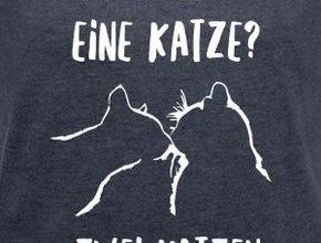 Katzen In Mannheim 290x220 - Katzen In Mannheim