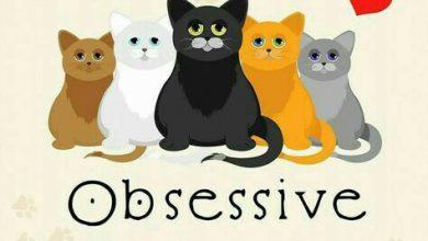 Katzen Motive Zum Ausdrucken 390x220 - Katzen Motive Zum Ausdrucken