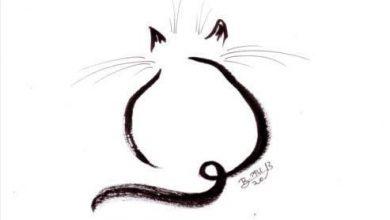 Katzen Zum Ausdrucken 390x220 - Katzen Zum Ausdrucken