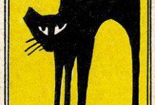 Katzenaugen Bilder Kostenlos 220x150 - Katzenaugen Bilder Kostenlos