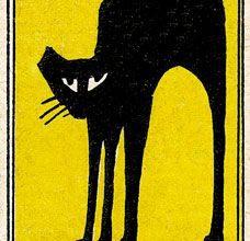 Katzenaugen Bilder Kostenlos 228x220 - Katzenaugen Bilder Kostenlos