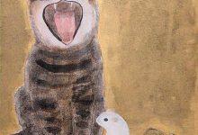 Katzenbabys Kaufen Nrw 220x150 - Katzenbabys Kaufen Nrw