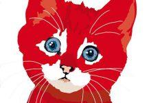 Katzenbabys Zu Verschenken Nrw 220x150 - Katzenbabys Zu Verschenken Nrw