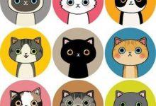 Katzenbilder Desktop Hintergrund 220x150 - Katzenbilder Desktop Hintergrund