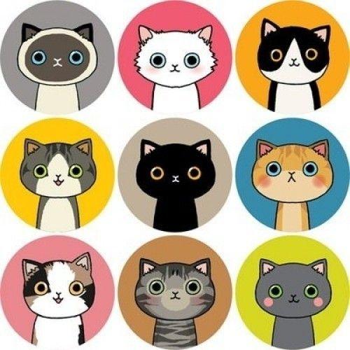 Katzenbilder Desktop Hintergrund - Katzenbilder Desktop Hintergrund