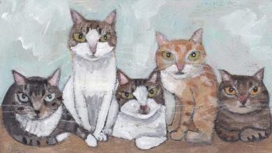 Katzenbilder Zum Ausmalen Und Ausdrucken 390x220 - Katzenbilder Zum Ausmalen Und Ausdrucken