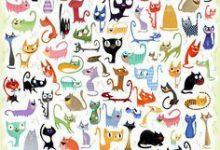 Katzenfutter 220x150 - Katzenfutter