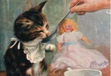 Katzenkinder 220x150 - Katzenkinder