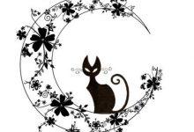 Katzenrassen Und Bilder Bilder Kostenlos 220x150 - Katzenrassen Und Bilder Bilder Kostenlos