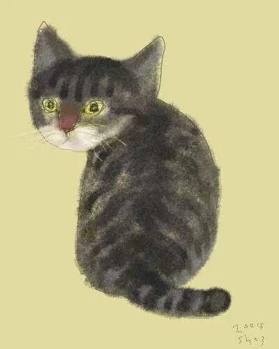 Kostenlose Baby Katzen - Kostenlose Baby Katzen