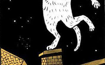 Liebe Katzenbilder Bilder Kostenlos 355x220 - Liebe Katzenbilder Bilder Kostenlos