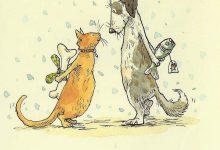 Lovely Cat Pic Bilder 220x150 - Lovely Cat Pic Bilder