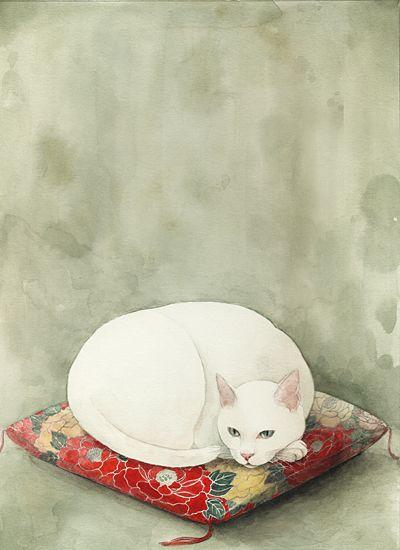 Lustige Bilder Katzen Bilder Kostenlos - Lustige Bilder Katzen Bilder Kostenlos