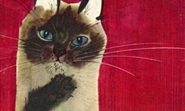 Lustige Katzenbilder Kostenlos 368x220 - Lustige Katzenbilder Kostenlos