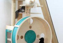 Lustige Katzenbilder Zum Geburtstag Bilder Kostenlos 220x150 - Lustige Katzenbilder Zum Geburtstag Bilder Kostenlos