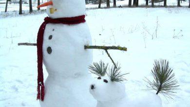 Lustige Schneemänner 390x220 - Lustige Schneemänner