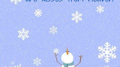 Namen Für Schneemänner 390x220 - Namen Für Schneemänner