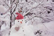 Nase Von Frosty Dem Schneemann 220x150 - Nase Von Frosty Dem Schneemann