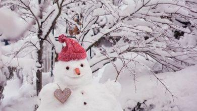 Nase Von Frosty Dem Schneemann 390x220 - Nase Von Frosty Dem Schneemann