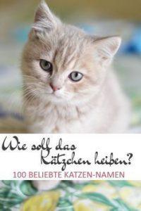 Neugeborene Katzen Bilder 200x300 - Neugeborene Katzen Bilder