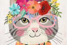 Pet Cats Pics Bilder 220x150 - Pet Cats Pics Bilder