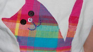 Pho Cat Bilder 390x220 - Pho Cat Bilder