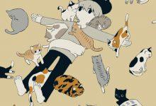 Pic Of A Cat Bilder 220x150 - Pic Of A Cat Bilder