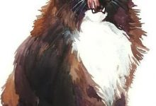 Süße Katzenbabys Bilder Bilder Kostenlos 220x150 - Süße Katzenbabys Bilder Bilder Kostenlos