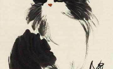 Süße Katzenbilder Kostenlos Downloaden Bilder Kostenlos 360x220 - Süße Katzenbilder Kostenlos Downloaden Bilder Kostenlos