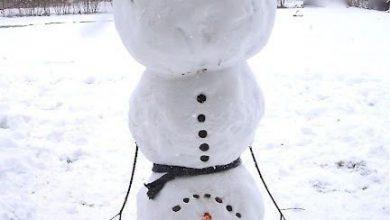 Schneemänner Mit Herz Download 390x220 - Schneemänner Mit Herz Download