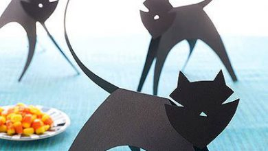 Schwarze Katzen Kaufen Bilder Kostenlos 390x220 - Schwarze Katzen Kaufen Bilder Kostenlos