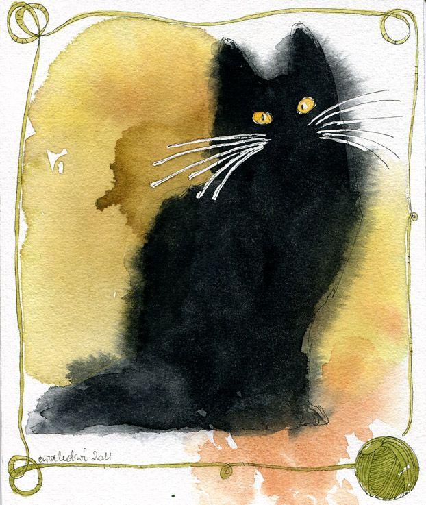Silly Cat Images Bilder - Silly Cat Images Bilder
