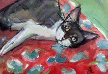 Silly Cats Bilder 220x150 - Silly Cats Bilder
