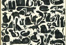 Small Cat Images Bilder 220x150 - Small Cat Images Bilder