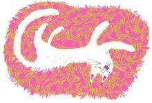 Sprechende Katze Bilder Kostenlos 220x150 - Sprechende Katze Bilder Kostenlos