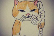 Suche Gratis Katzenbabys 220x150 - Suche Gratis Katzenbabys