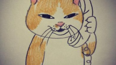 Suche Gratis Katzenbabys 390x220 - Suche Gratis Katzenbabys