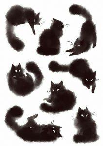 Suche Katze Gratis 212x300 - Suche Katze Gratis