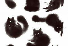 Suche Katze Gratis 220x150 - Suche Katze Gratis