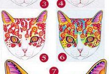 Suche Katze Kostenlos 220x150 - Suche Katze Kostenlos