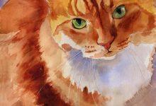 Tierbilder Kostenlos 220x150 - Tierbilder Kostenlos