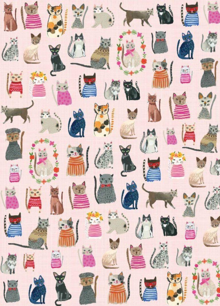 very cute cat images bilder  bilder und sprüche für