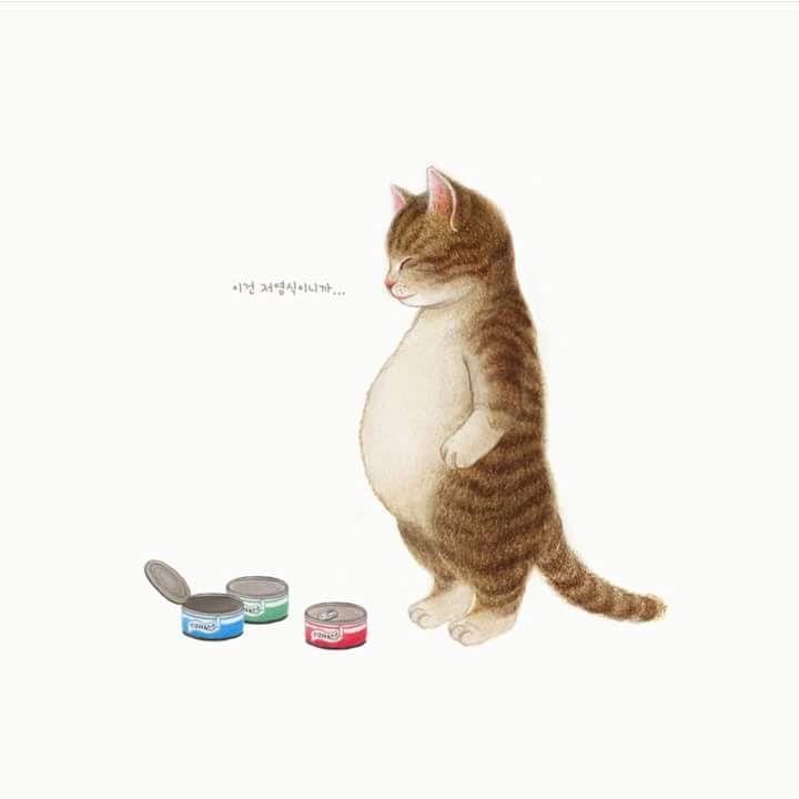 Wallpaper Katzen - Wallpaper Katzen
